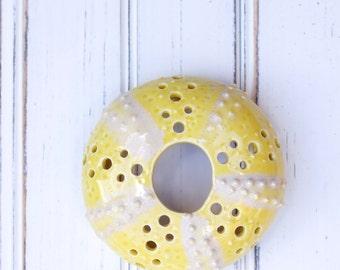 small urchin wall hanging, urchin tabletop sculpture, Marigold
