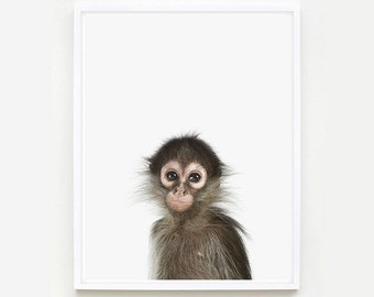 Baby Animal Nursery Art Print. Baby Monkey Little Darling. Safari Animal Print. Animal Wall Art. Animal Nursery Decor. Baby Animal Photo.