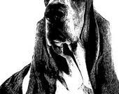 basset hound dog face Digital Image Download pets animal art graphics abstract impressionist illustration