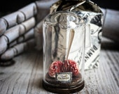 Brain Miniature in a GLASS Bell Jar, Dome with Fork, Hannibal Cannibal Tribute, Weird Gifts Bon Apetit