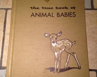1955 The True Book of Animal Babies Children's Book
