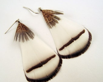 White Feather Earrings with a touch of grey