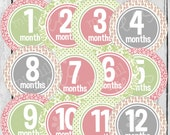 MONTHLY STICKERS or Monthly  Iron On Decals - 12 Monthly iron on - for Baby girl - Strawberry, Grey & Sage Monthly Pack (Style#A17)