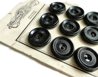 Antique Vegetable Ivory Buttons - 6 Vintage 1900s Black Sew Through 3/4 inch 19mm
