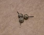 Medium Dalmation Jasper spheres - Medium weight