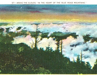 Vintage Postcard - Above the Clouds in the Blue Ridge Mountains (Unused)