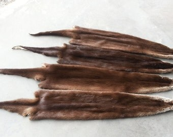 One River Otter Fur Pelt- No Feet- Soft garment Tanned in Your Choice of Size- Stock No. RVOH