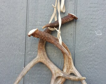 Rattling Horns Wallhanging- Lovely Matched Pair of Whitetail Deer Shed Antlers Set Lot No. 24777Y