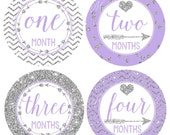 FREE GIFT, Baby Girl Monthly Stickers, Baby Month Stickers, Lavender, Silver, Milestone Stickers, Photo Prop, Tribal Arrows Nursery Decor