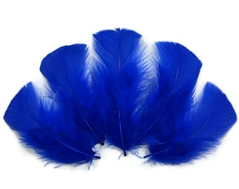 Turkey Flats, 1/4 lb - ROYAL BLUE Turkey T-Base Wholesale Body Plumage Feathers (bulk) : 4083