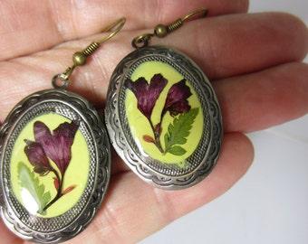Coral Bell Earrings, Real Flowers, Pressed Flowers, Brass, Resin (1930)