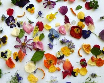 Dry Flower Confetti, Aisle Decoration, Real Dry Flowers, Biodegradable, Flower Petal, Wedding Decor, Garden Wildflowers, 25 US cups Confetti