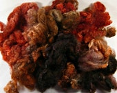 Autumnal Romney fleece for spinning and felting (3.1 ounces)