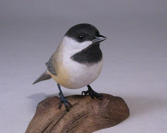 Black-capped Chickadee on Hand Carved Wooden Base