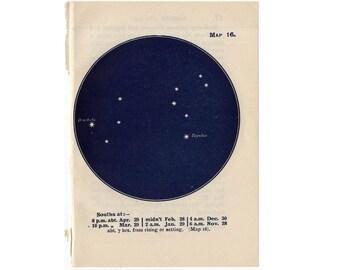 1948 LEO CONSTELLATION STARS lithograph - mini constellation map - original vintage print - celestial astronomy - lion no. 16
