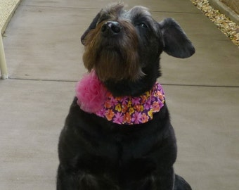 """Mariposa Floral Dog Scrunchie Collar with chiffon rosette - M: 14"""" to 16"""" neck"""