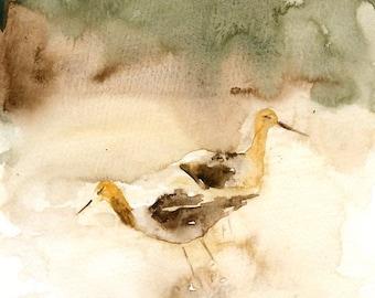 Avocet-Original watercolor painting 8x10inch-Landscape- Nature art-home decor