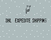 DHL Expedite Shipping, Upgrade shipping