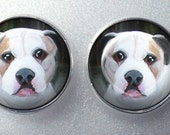 Pitbull Post Earrings ~ Pittie Earrings ~ Gifts for Her ~ February Finds ~ Trending Items