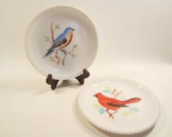 2 Vintage Milk Glass Plates Westmoreland Birds Beaded Hobnail Edge