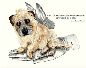 Glen of Imaal Terrier - card