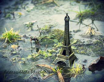 Eiffel Tower, Fine Art Photography, france, paris, photo, surreal, nature, landscape, architecture, water, print, green, art, still life