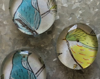Birds of a feather set of three Glass Magnets