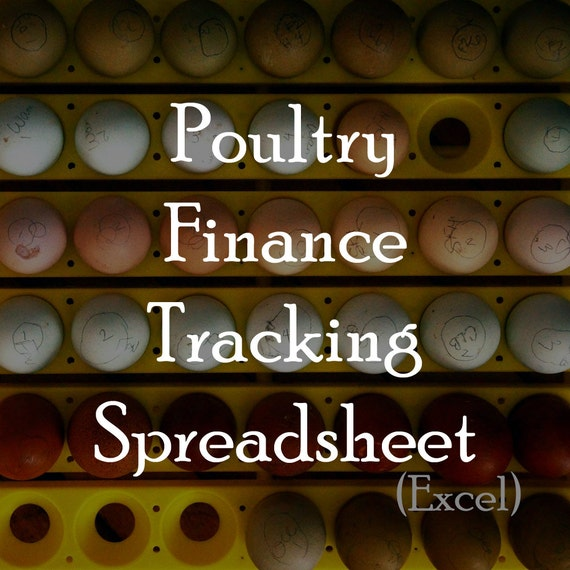 If The Financer Of A Vehicle Requires You To Have Full: Poultry Finance Tracking Spreadsheet Excel Required