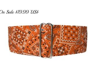 1.5 Inch Martingale Collar, Orange Martingale Collar, , Bandana Martingale Dog Collar, Orange Bandana, Orange Dog Collar, Preppy