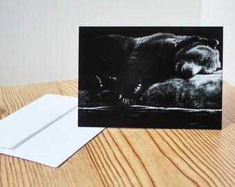 Blank Note Card Bear Note Card Animal Art Note Cards Wildlife Note Cards Greeting Cards Art Note Card Wildlife Prints Animal Prints