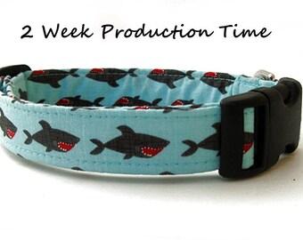 Nautical Dog Collar - Shark Attack!