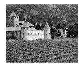 "Fine Art Black & White Photography of Vineyard - ""Castello Mareccio and Vineyard"" (Italy)"