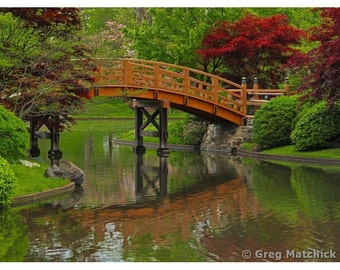 Fine Art Color Landscape Photography of Wooden Bridge and Reflections at a Lake in a Japanese Garden