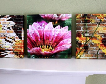 Canvas wrap Photographic Print - 8x8 on Canvas - choose from three Photos