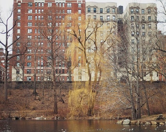 Central Park North - Fine Art Photograph, NYC, buildings, reflections, urban, autumn, winter, travel photography