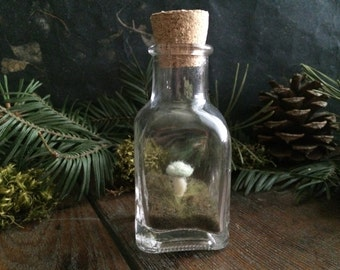 Amanita mushroom terrarium, Mint Green, a felted wool garden in a glass bottle, light green felt mushroom terrarium, gifts for gardeners
