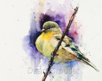GOLDFINCH Watercolor Bird Art Print, Songbird Painting by Dean Crouser