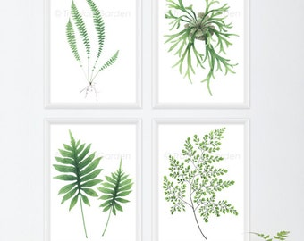 Fern Watercolor Print Set - Any FOUR Fern Art, Botanical Prints / 8x10 OR 8x11 Tropical Decor, Leaves Wall Art