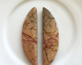Multi-color Picasso Jasper Crescent Cabochon Pair