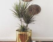 large vintage hollywood regency hammered brass pot planter / indoor gardening