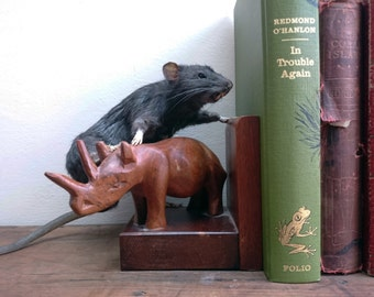 Rat Taxidermy realistic taxidermy Gothic bookend real stuffed rat goth home decor curiosity ornament oddity bookend nature love decor rattus