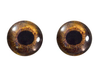 16mm Hawk Glass Eye Cabochons - Bird Eyes for Taxidermy, Doll or Jewelry Making - Set of 2