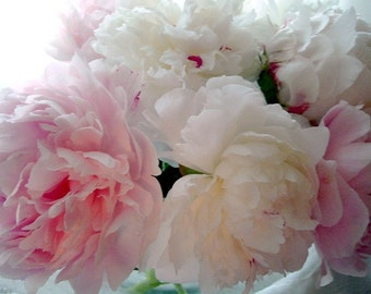 Pink And White Peonies, Maine Summer Garden, Mother's Day, Wedding, Romantic Still life, Wall Decor,  SPECIALIZING in CUSTOM ORDERS