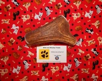 "Organic XL Elk Antler Dog Chew ""Made in Montana"" (Lot C99)"