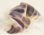 9 natural wampum quahog clam shell pieces purple and white Cape Cod (no.2)