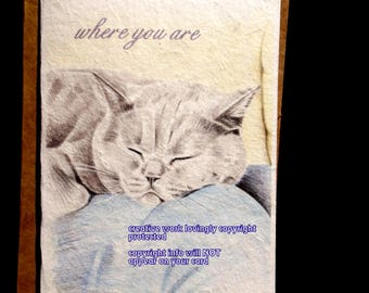 where you are ( a spirit's song ) gray cat cards/ storybook/choose another image//sentimental cards/unique empathy condolence cards