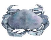 Crab watercolour painting - ORIGINAL watercolour painting of a crab - Contemporary Coastal Decor - Beach house wall art - marine art