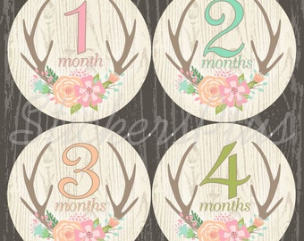 Baby Month Stickers Monthly Stickers Baby Girl Stickers Baby Milestone Sticker Baby Girl Floral Woodland Deer Antler Antlers II Gift