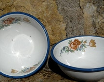TWO Enamel Cereal Bowls by Cinsa, Hazel Decal Enamel Bowls Shabby Chic
