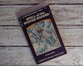 Dungeons and Dragons Book - An Endless Quest Book - Spell of The Winter Wizard  #11 - A Dungeons and Dragon Book